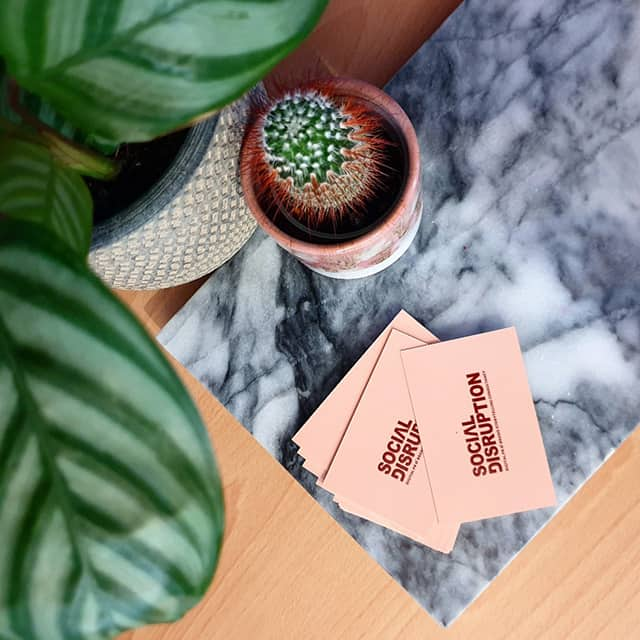 House plant, cactus and pastel business cards by Social Disruption PR