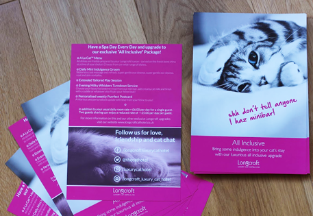 Fabulous Feline Flyers