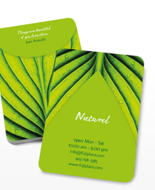 Preview image of Business Card design 'Natural Spa'