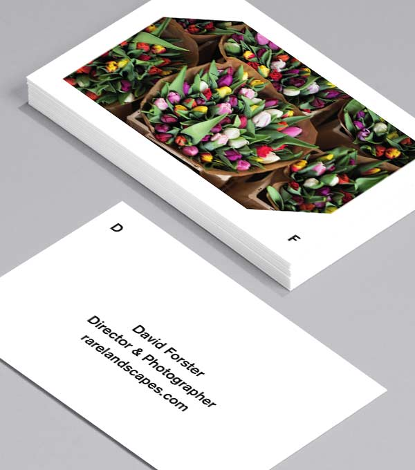 Business Card designs - Snap It