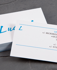 Preview image of Business Card design 'Ludwik Hirszfeld'