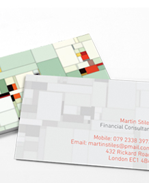 Preview image of Business Card design 'Dr WooHoo Blocks'
