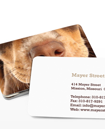Preview image of Business Card design 'Cute Little Noses'