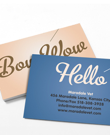 Preview image of Business Card design 'Pet Sounds'