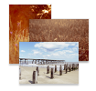 Paul Cooklin Photography Postcards