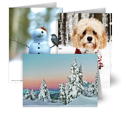JPG Photo Contest Holiday Cards